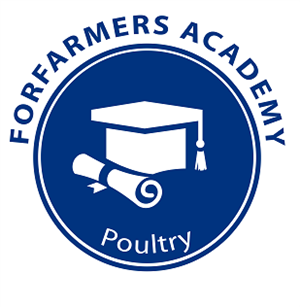 Afbeelding: Poultry Academy